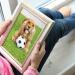 Thumbnail for World Pet Memorial Day
